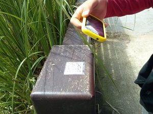 Geocaching_Vocacion TIC